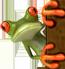 composting toilet frog