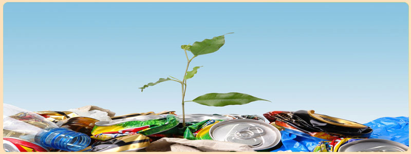 Why is Recycling so Important: Home page